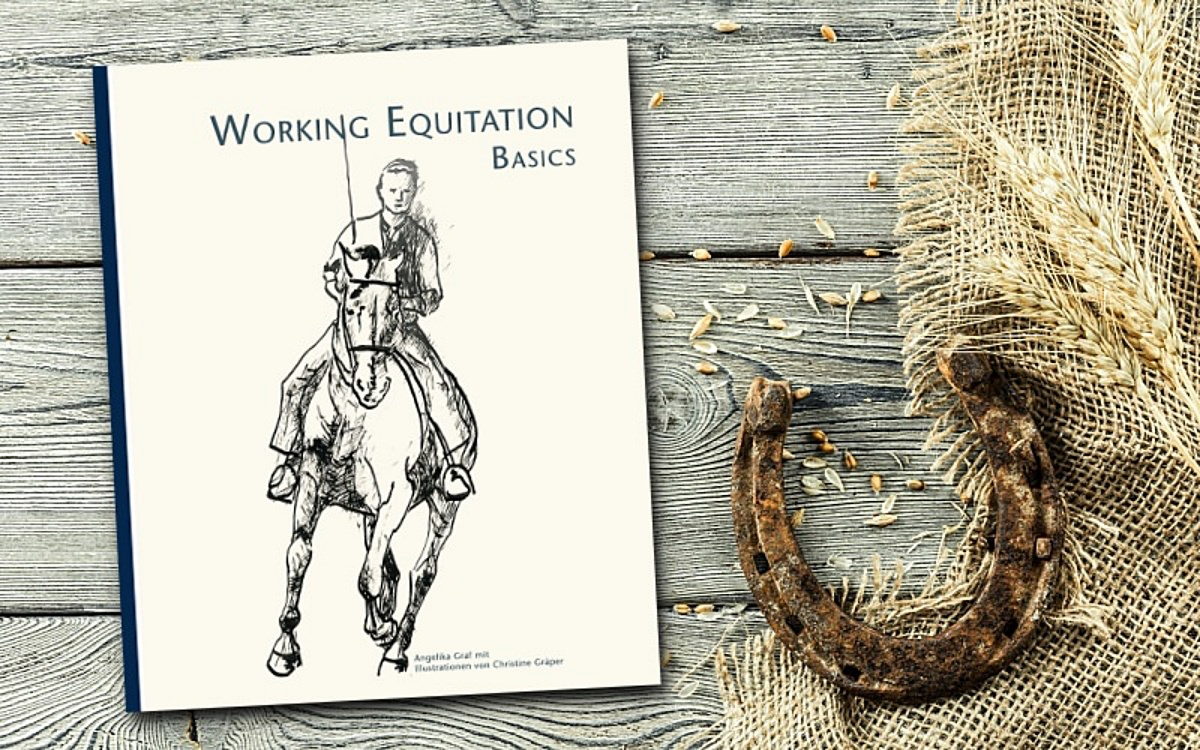 working equitation basic