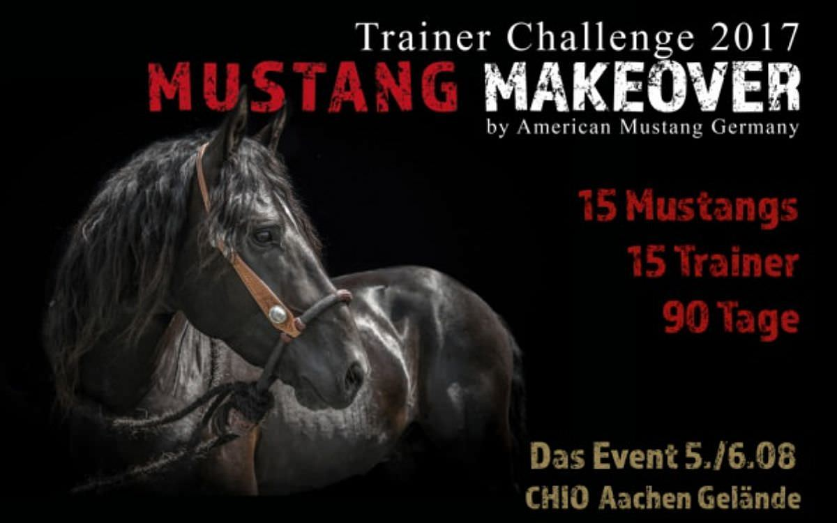 Mustang Makeover 2017
